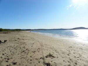 Corrigans Beach 4
